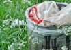 france-banned-to-use-plastic-1