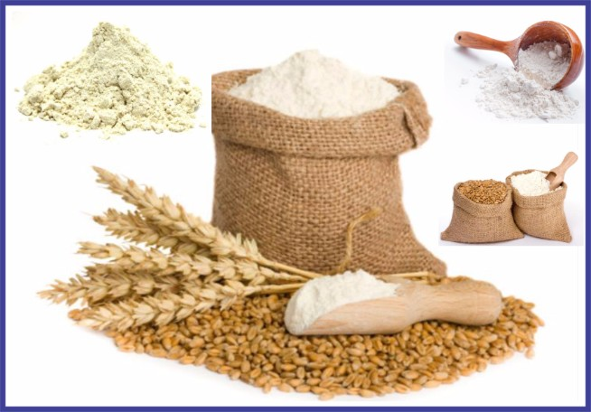 Flour Milling business investment